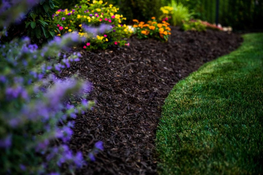 mulch and plant landsaping